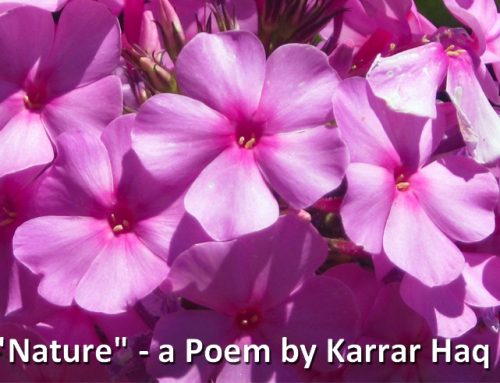 """Nature"" Poem by Karrar Haq"